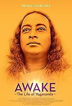 Primary image for Awake: The Life of Yogananda
