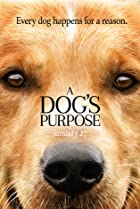 Image of A Dog's Purpose