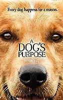 為了與你相遇 A Dog's Purpose 2017