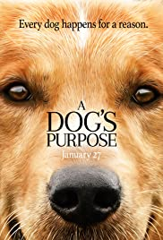Image result for a dog's purpose