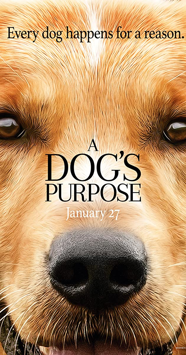 Šuns tikslas / A Dogs Purpose (2017) parsisiusti atsisiusti filma nemokamai