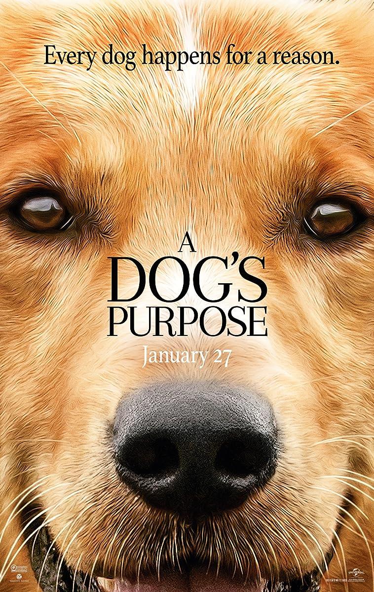 Šuns tikslas