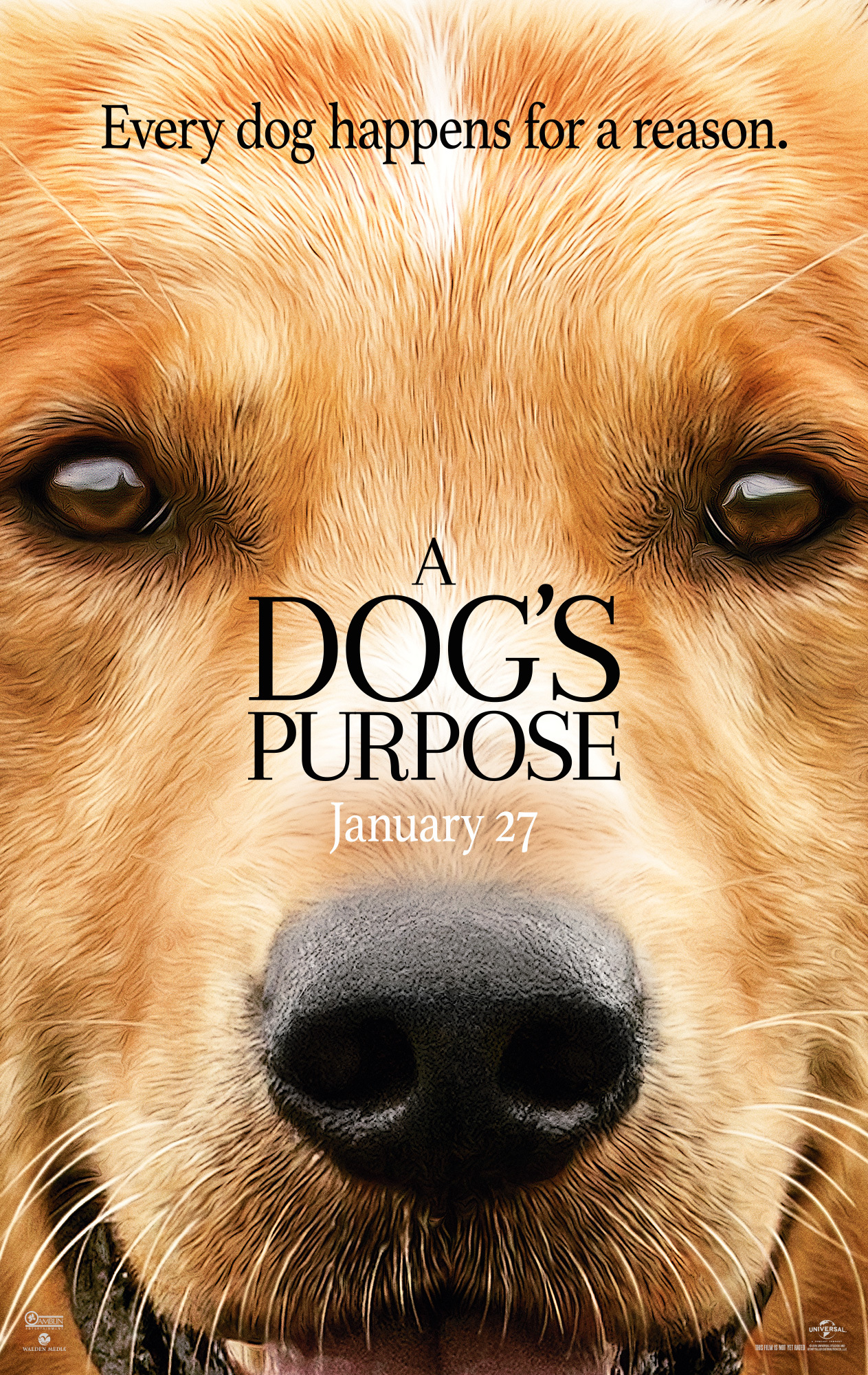 image A Dog's Purpose Watch Full Movie Free Online