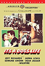 It's a Dog's Life (1955) Poster - Movie Forum, Cast, Reviews