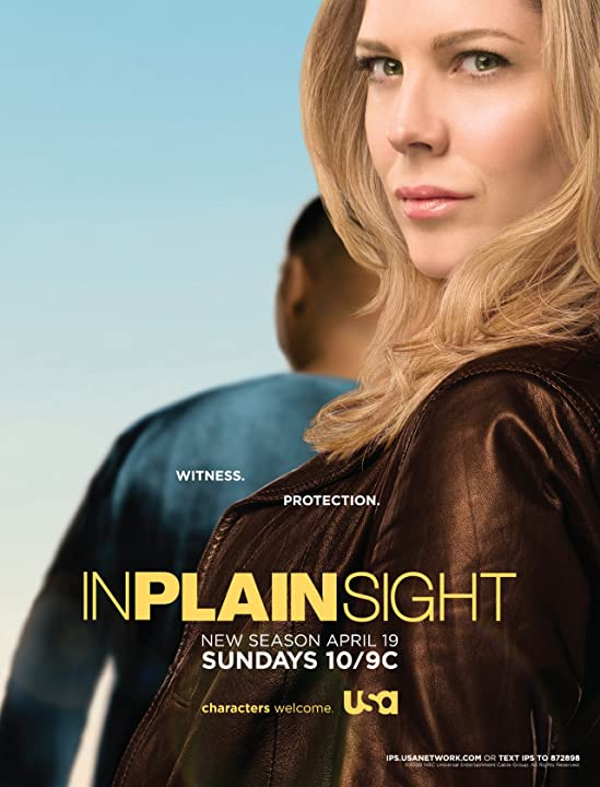 In Plain Sight (2008)