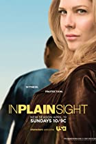 In Plain Sight (2008) Poster
