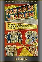 Image of Paradise in Harlem