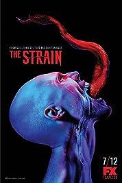 The Strain - Season 1 poster