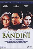 Image of Wait Until Spring, Bandini