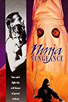 Image of Ninja Vengeance