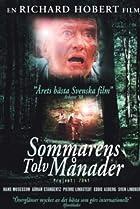 Image of Sommarens tolv månader