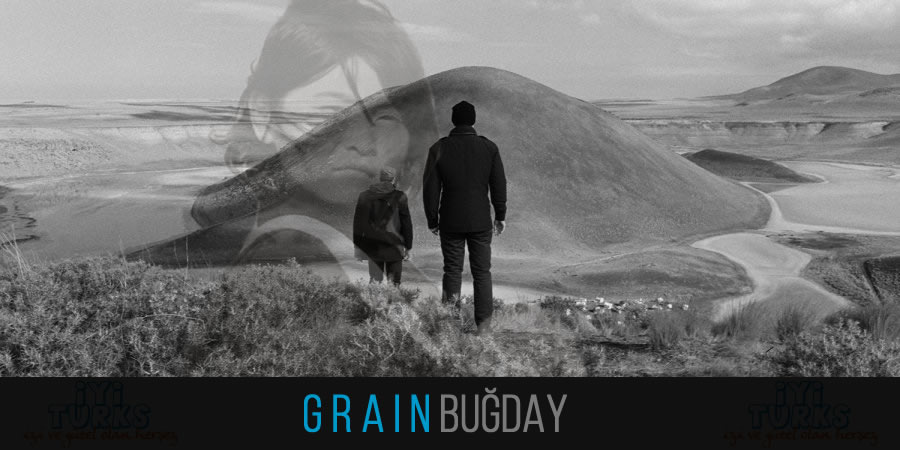 Grain (2017)