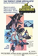 Primary image for The Daring Dobermans
