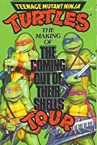 Image of Teenage Mutant Ninja Turtles: The Making of the Coming Out of Their Shells Tour