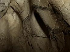 Cave of Forgotten Dreams -