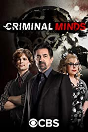 Criminal Minds - Season 2 poster