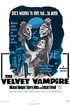 Image of The Velvet Vampire