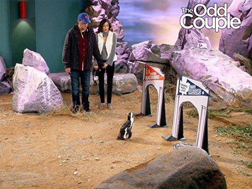 The Odd Couple: Batman vs. The Penguin | Season 3 | Episode 11