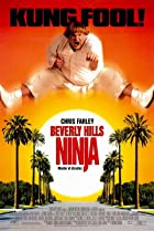 Image of Beverly Hills Ninja