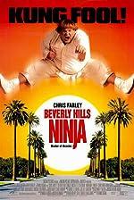 Beverly Hills Ninja(1997)