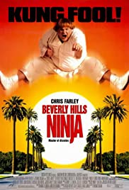 Beverly Hills Ninja(1997) Poster - Movie Forum, Cast, Reviews