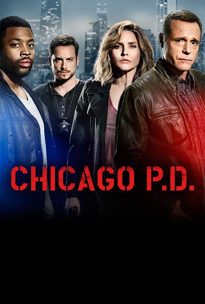 Assistir Chicago P.D. Dublado e Legendado Online