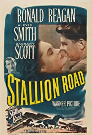 Stallion Road (1947) Poster - Movie Forum, Cast, Reviews