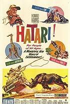Image of Hatari!