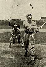 Baseball Industry