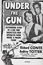 Image of Under the Gun