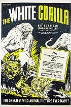 The White Gorilla (1945) Poster