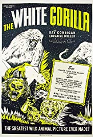The White Gorilla Poster