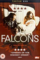 Image of Falcons