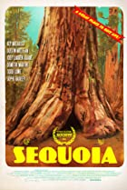 Image of Sequoia