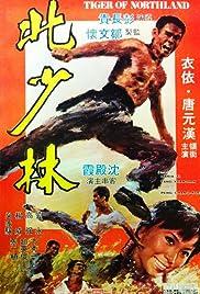 Bei Shao lin Poster