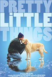 Pretty Little Things Poster