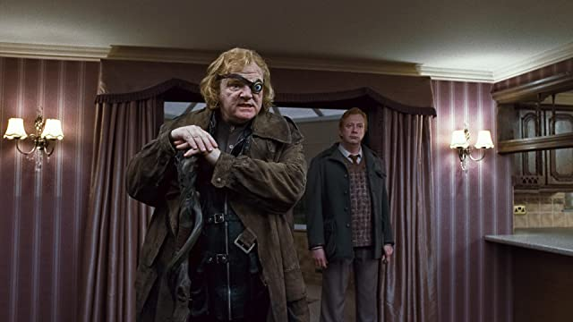 Brendan Gleeson and Mark Williams in Harry Potter and the Deathly Hallows: Part 1 (2010)