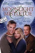 Image of Moonlight & Mistletoe