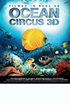 Image of Ocean Circus 3D: Underwater Around the World
