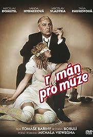 Román pro muze(2010) Poster - Movie Forum, Cast, Reviews
