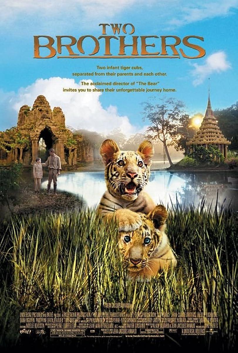 Du broliai – tigrės vaikai