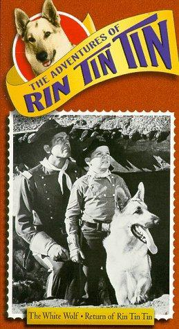 Lee Aaker, James Brown, and Rin Tin Tin II in The Adventures of Rin Tin Tin (1954)