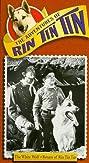 The Adventures of Rin Tin Tin (1954) Poster