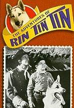 The Adventures of Rin Tin Tin