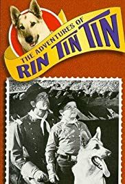 The Adventures of Rin Tin Tin Poster