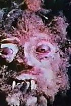 Image of Curse of Bigfoot