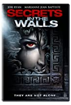Primary image for Secrets in the Walls