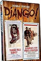 Image of Django Kills Softly
