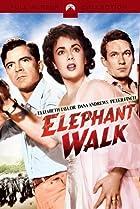 Image of Elephant Walk