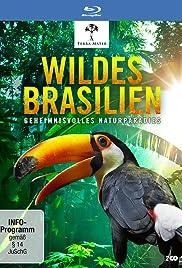 Wildes Brasilien - Der zerbrechliche Wald Poster